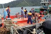 Myanmar tìm thấy 59 nạn nhân trong vụ rơi máy bay ở Myanmar