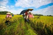Tỉnh Trà Vinh tập trung tái cơ cấu nông nghiệp ở 6 lĩnh vực