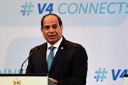 Thu thập chữ ký đề nghị Tổng thống Ai Cập ra tranh cử nhiệm kỳ 2