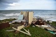 Mỹ: Tranh cãi về khoản viện trợ cho khu vực bị ảnh hưởng bởi siêu bão