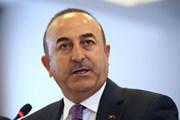 Thổ Nhĩ Kỳ kêu gọi công nhận Đông Jerusalem là thủ đô của Palestine