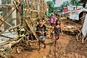 Bão Kai-Tak tiếp tục gây nhiều thương vong ở Philippines