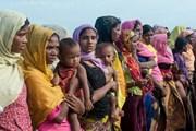 Bangladesh và Myanmar hồi hương người tị nạn Rohingya trong 2 năm