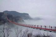 Bạn có đủ dũng cảm đi qua cây cầu thủy tinh dài nhất trong sương mù?