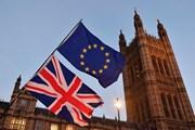 Anh tái khẳng định sẽ rút khỏi Liên minh thuế quan châu Âu