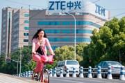 Tổng thống Trump: Mỹ-Trung Quốc phối hợp để đưa ZTE trở lại hoạt động