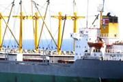 Bất chấp lệnh trừng phạt, các tàu chở dầu vẫn cập cảng Triều Tiên
