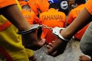 Indonesia triển khai phòng đặc biệt giam giữ các phần tử khủng bố