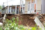 [Photo] Sạt lở nghiêm trọng nhấn chìm nhiều ngôi nhà ở ĐBSCL