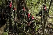 Chính phủ Colombia và ELN không đạt được thỏa thuận