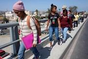 Mỹ: Hơn 2.000 trẻ em di cư sẽ được đoàn tụ với cha mẹ