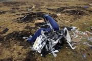 G7: Nga phải chịu trách nhiệm về thảm họa máy bay MH17