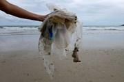 Chính phủ Thái Lan cấm nhập khẩu rác thải điện tử, rác thải nhựa