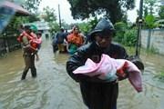 Hơn 300 người thiệt mạng trong trận lũ lụt tồi tệ nhất ở Ấn Độ