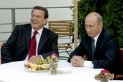 Điện Kremlin bác tin Ông Putin sẽ dự đám cưới cựu Thủ tướng Đức