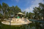 Đài Loan: Khám phá thế giới động vật kỳ thú ở Wanpi World Safari Zoo