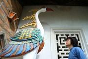 Nghệ sỹ Ngô Hồng Quang: Người đi trên dây của những thanh âm