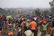 Bí ẩn hơn 100 trường hợp bất ngờ tử vong tại CHDC Congo