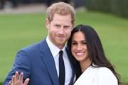 [Video] Cầu kì khâu chuẩn bị cho đám cưới Hoàng gia Anh