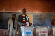 Zimbabwe: Ấn định thời gian giải quyết khiếu nại kết quả bầu cử