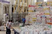 Agribank dành gói tín dụng 465 tỷ đồng xuất khẩu sang Cuba