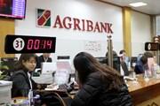 Agribank giảm lãi suất cho vay 0,1%/năm nhân 30 năm thành lập