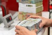 Chuyên gia Nguyễn Trí Hiếu: Tỷ giá có thể sẽ tăng từ 1-3%