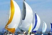 20 đoàn quốc tế dự festival thuyền buồm ở Việt Nam
