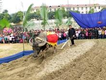[Video] Hàng nghìn người nô nức tham dự lễ hội Lồng Tông