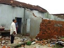 EU viện trợ 200.000 euro giúp các nạn nhân bão Damrey tại Việt Nam