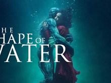 """""""The Shape of Water"""" thống trị danh sách đề cử giành tượng vàng Oscar"""