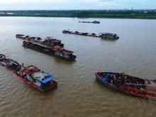 Sau chỉ đạo của Phó Thủ tướng, nạn trộm cát trên sông Hồng vẫn 'nóng'