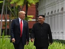 Tổng thống Mỹ khen nhà lãnh đạo Triều Tiên có nhân cách tốt