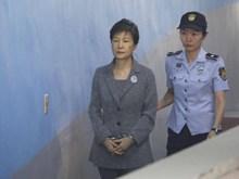 Đảng đối lập chính đề nghị cựu Tổng thống Park Geun-hye rút khỏi đảng