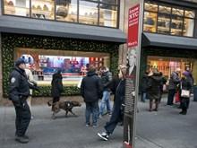 Mỹ: Cảnh sát New York lên kế hoạch an ninh dịp đón Năm mới