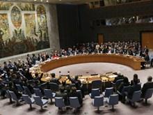 Nga: Hội đồng Bảo an thảo luận về tình hình nhân đạo ở thành phố Raqqa