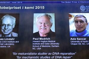 Giải Nobel Hóa học vinh danh công trình sửa chữa ADN tổn thương