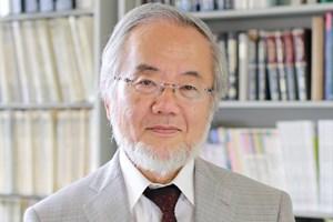Công trình nghiên cứu giành giải Nobel Y học 2016 có gì đặc biệt?