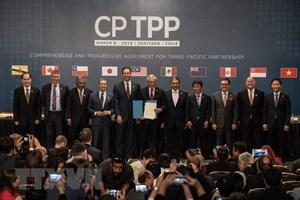 Phản ứng của Việt Nam về thông tin Mỹ xem xét gia nhập CPTPP