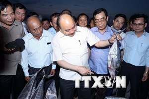 Thủ tướng kiểm tra việc đền bù thiệt hại do sự cố môi trường biển