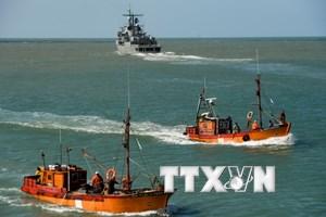 Argentina tiếp tục tìm tàu ngầm San Juan bị mất tích dù sóng cao 3m