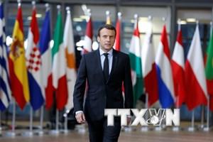 Pháp tuyên chiến với vấn nạn thông tin giả mạo trên Internet