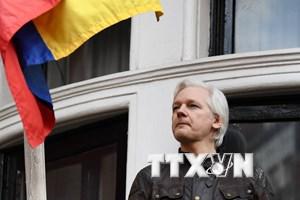 Ecuador mời trung gian giải quyết vấn đề tương lai của ông Assange