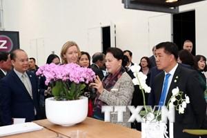 Chủ tịch Quốc hội làm việc với Tổ chức Hợp tác xã Hà Lan