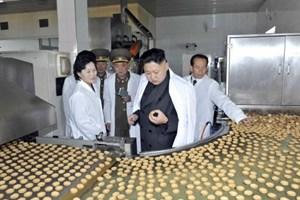 Thương mại giữa EU và Triều Tiên giảm mạnh do lệnh trừng phạt