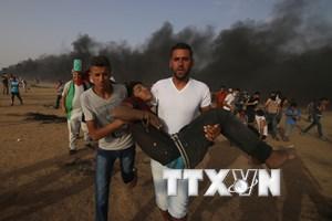 Hơn 300 người Palestine thương vong do đụng độ với binh sỹ Israel