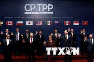 Các nhà đàm phán CPTPP thảo luận về cấu trúc trong tương lai