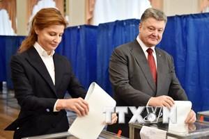 OSCE đánh giá tích cực cuộc bầu cử địa phương tại Ukraine