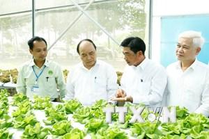 Nông nghiệp công nghệ cao: Chính sách nhiều, thụ hưởng thực tế ít