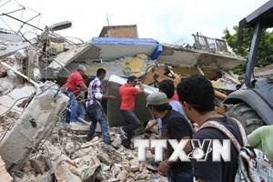 Đảm bảo an toàn cho công dân Việt Nam sau trận động đất tại Mexico